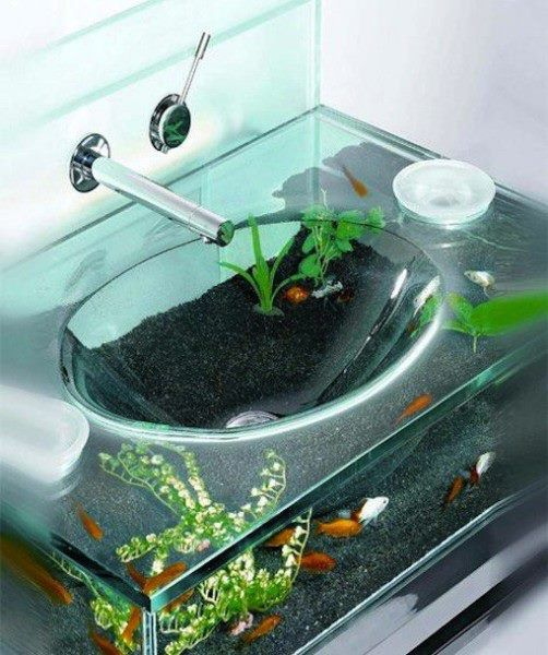 Sink fish tank love want need pinterest fish fish for What do i need for a fish tank