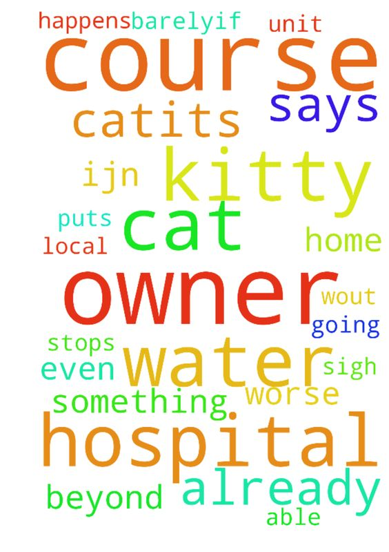 """Prayers for Kitty -    Please pray for """"Kitty"""" the cat.~its been a few days that she has barely--if at all eaten because her owner is in the    hospital. ~please pray for her and for her owner too of course. (she is in the psychiatric unit of our local hospital.)    they both need prayers now. I am worried because I don't know when she will be able to come home and of course    the cat is only going to get worse w/out her. (she is alone most of the time and is a…"""