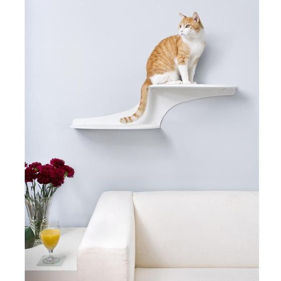 """Cat Clouds Cat Shelf - my spry 20 year old Persian would love this and look adorable on it. Recently learned from the Cat Whisperer on that Animal Planet  show """"My Cat from Hell"""", cats are territorial and are all about vertical space."""