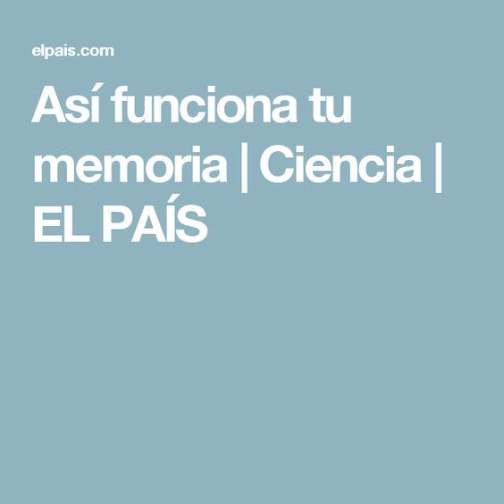 Así funciona tu memoria | Ciencia | EL PAÍS
