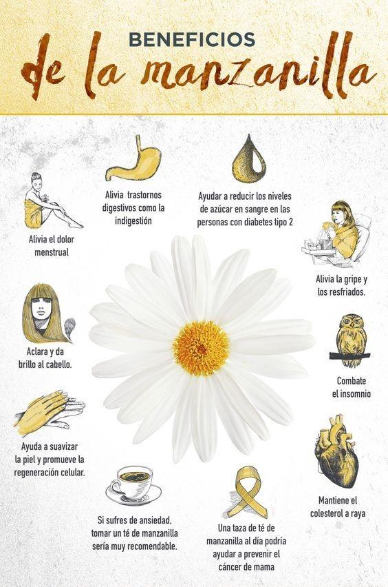 Es muy sabido que la manzanila nos ayuda con la tos seca. Si quieres probar otras opciones chécalas aquí