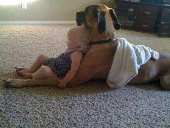 """""""Bark-a-Lounger""""....Adorable !!  Que belleza!: Great Danes, Sweet, Best Friends, Bestfriends, Cute Animals, Puppy, Big Dogs"""