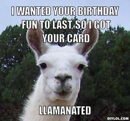 HAPPY BIRTHDAY funny llama Google Search Llama Pinterest