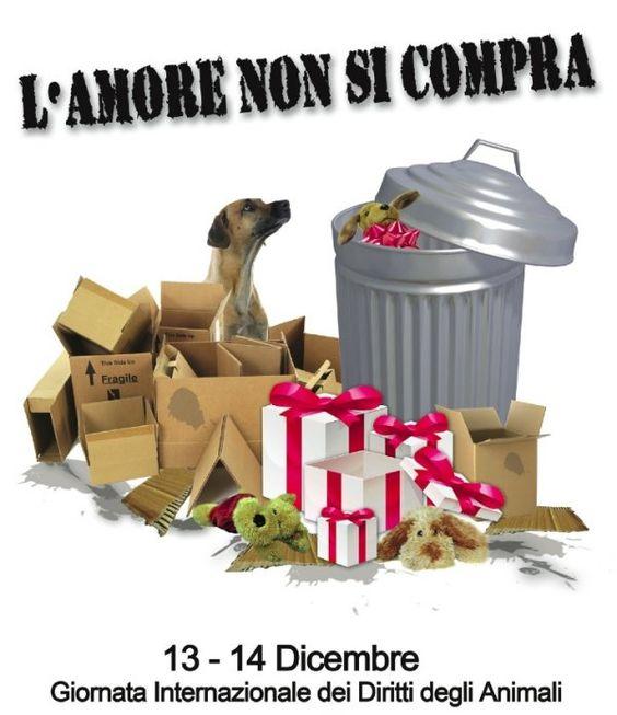Giornata Internazionale per i Diritti degli Animali - http://www.sfogliacitta.it/giornata-internazionale-per-diritti-degli-animali/