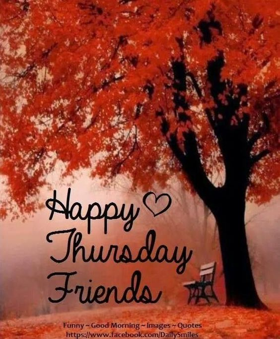 It's a cloudy and chilly fall morning here! Hope y'all have a most blessed day! #AvonLifeWithTammy #Thursday #FallMorning