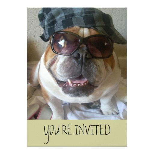 English Bulldog Invitations Birthday/Any