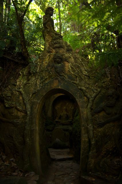 In this forest temple