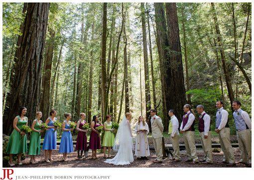 My dream wedding location muir woods in california for Wedding in the woods california