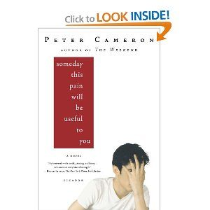 Someday This Pain Will Be Useful to You: A Novel (2009)  By: Peter Cameron  ISBN: 0312428162  $10.99 I believe that this is a good book to have in a collection for older children. It can help them personally if they are GLBT to know that there is hope for them later in life, and possibly give them something to look forward to for their future.