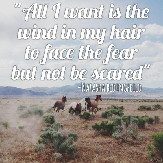Wild horses-Natasha