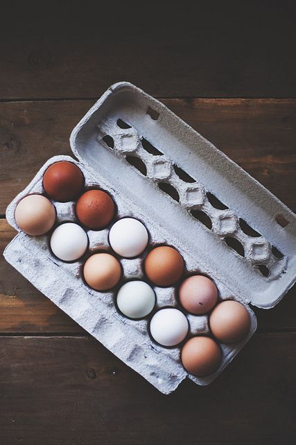 I tried to get chickens that laid those really dark brown/ reddish eggs once...Cuckoo Marans. They gave me Barred Rocks by mistake. oh well.