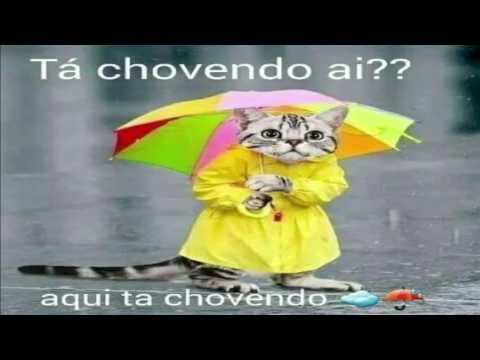 Ta Chovendo Ai Aqui Ta Chovendo Bom Dia De Chuva Dia Chuvoso