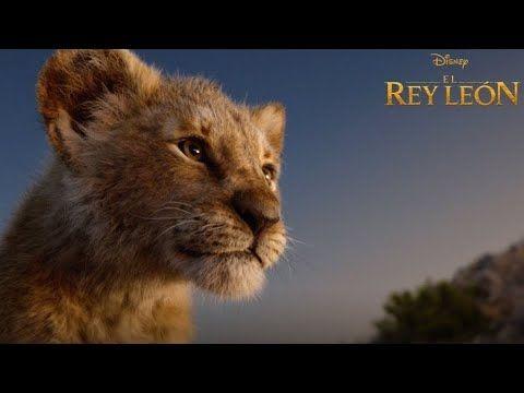 Rey Leon 2019 Pelicula Completa En Espanol De Espana Youtube En 2020 Peliculas Completas Rey Leon El Rey Leon Pelicula