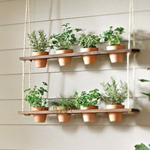 How to Make a Hanging Herb Garden | Garden Club. This would be great in the kitchen window