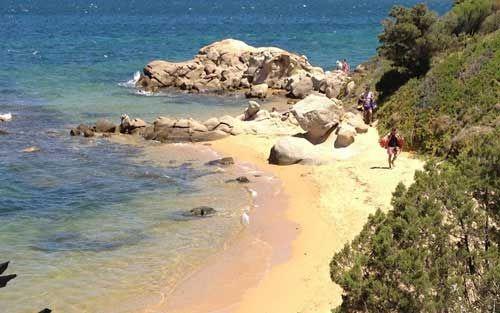 Cala Ginepri Golfo Di Arzachena Baia Sardinia Sardinien