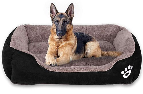Top 10 Best Outdoor Small Large Dog Beds On Sale Reviews In 2020