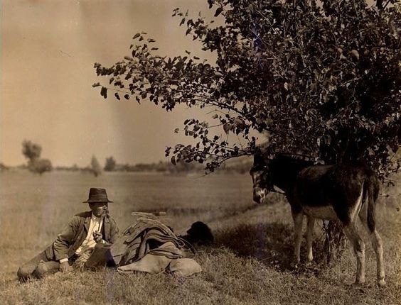 Pihenő - Sióagárd Fotó: Balogh Rudolf (1879-1944)