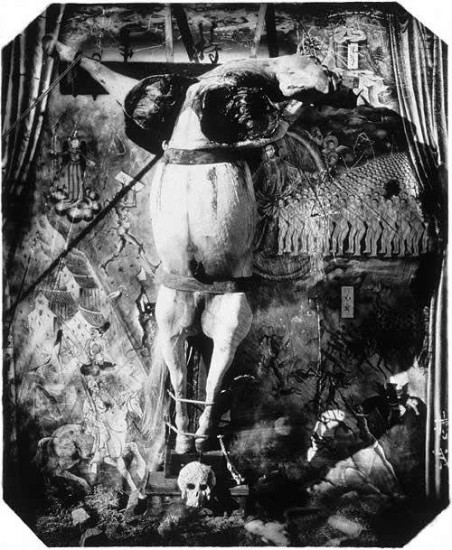 Witkin - El caballo crucificado