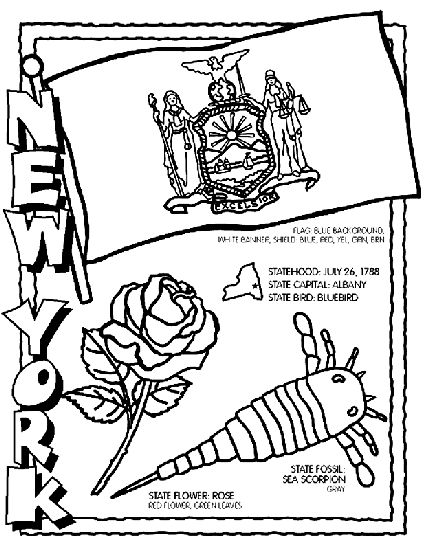 Coloring pages coloring and new york on pinterest for New york state flower coloring page