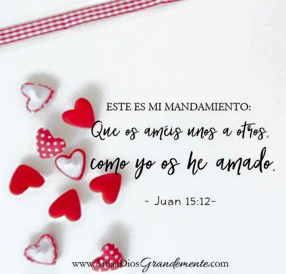 Juan 15:12 Este es mi mandamiento: Que os améis unos a otros, como yo os he amado.
