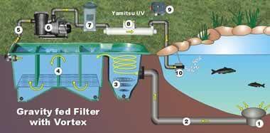 Pond filters cartridge filter pond filters pinterest for Fish pond filtration setup