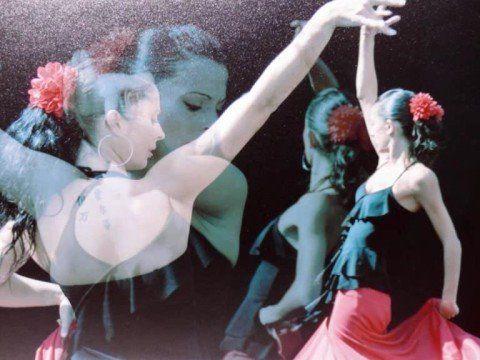 Baile Flamenco fotos