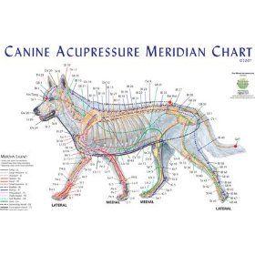 meridian massage acupressure