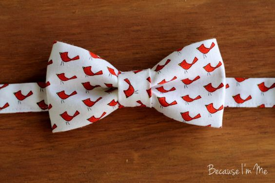 Boys Bow Tie  For the Birds delightful red birds on by becauseimme