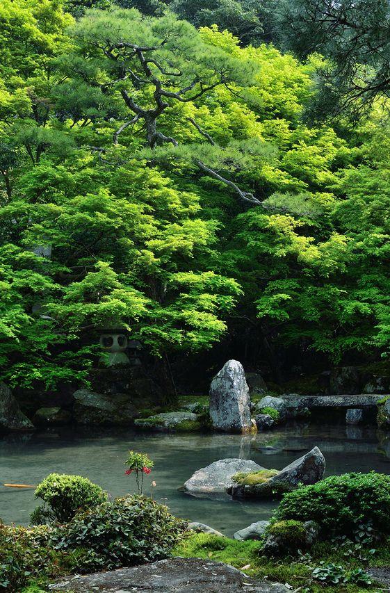 isaykonnichiwa:  Kyoto, Japan byyuta35