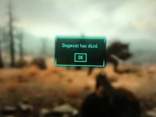 Image result for Fallout 3 Dogmeat died information