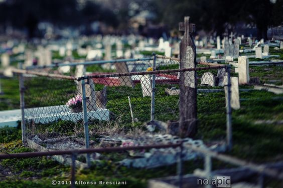 Holt Cemetery New Orleans