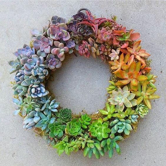 #succulentgoals @jenssuccs incredibly gorgeous succulent wreath