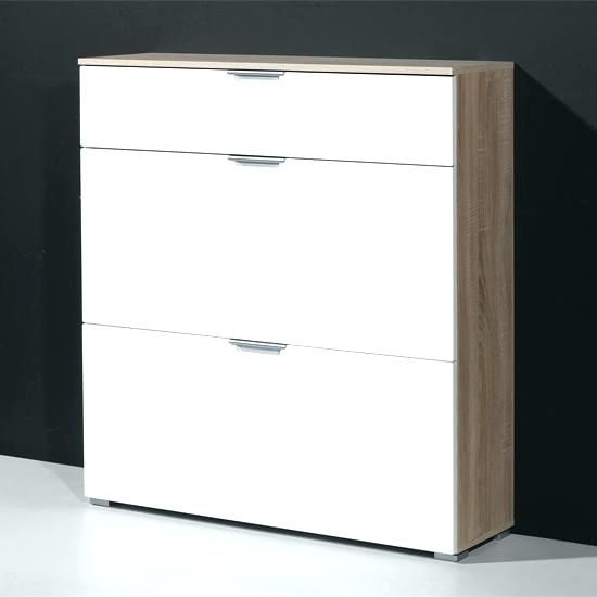Shoe Cabinet White Gloss Shoe Cabinet Entryway Shoe Storage