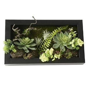 Buy 787 in 1378 in 3D Artificial Flowers Wall Hanger Succulent Plants Moss on the Stone Leaves Ferns with Frame by Seppinha