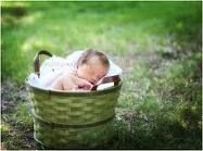 Another baby in a basket!