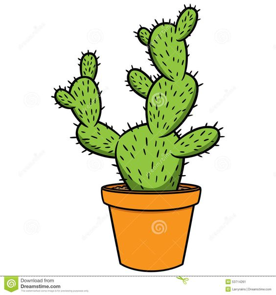 kaktus - Hledat Googlem