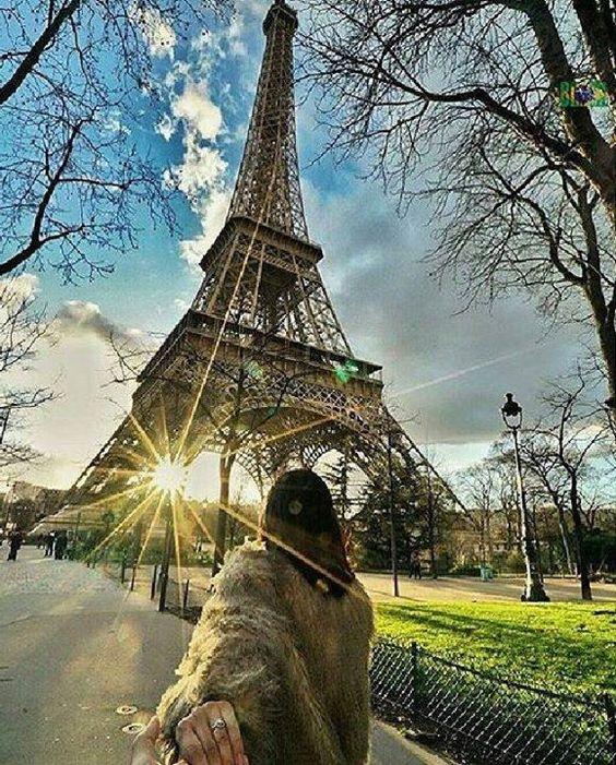 Foto de: @gente_que_ama_viajar. #br__gentequeamaviajar_aw.  .   Data: #br030416. Location: Eiffel Tower Paris.  Seleção: @val.spa.  Admins: @chbrasil & @carol_travelling. Para ganhar destaques no @BR.AroundtheWorld use as seguintes hashtags ao longo do mês de abril: #braroundtheworld #braroundtheworld0416 (para fotos antigas) Para mais informações sobre a nossa galeria e grupo @Brazil visite @BR.Brasil. For more information about our gallery and @Brazil Group visit @BR.Brazil…