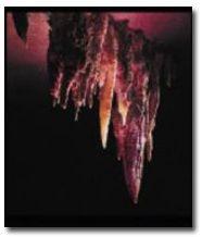 Fantastic Caverns - Springfield MO USA