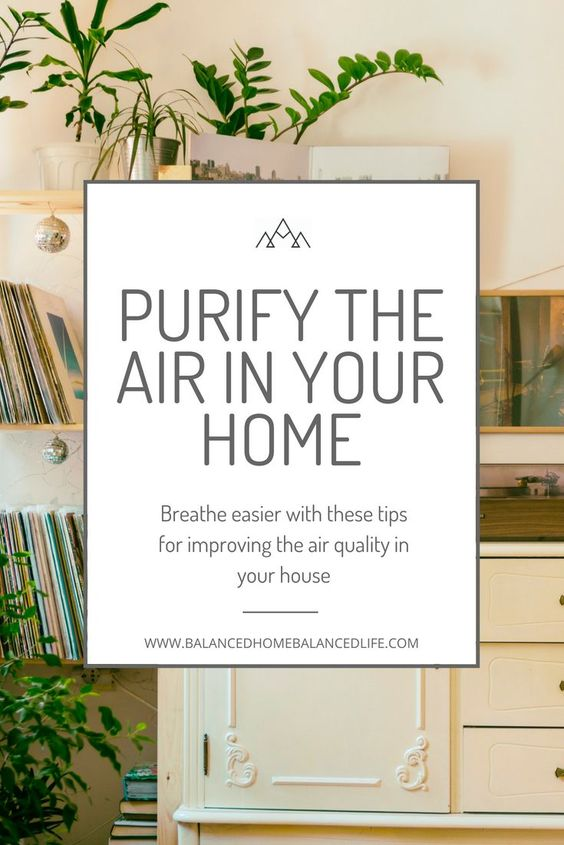 Healthy indoor air quality is essential for healthy living. Learn how you can improve the air in your home with these easy to implement strategies. open windows, house plants that purify the air #healthyhome #airquality #toxinfree