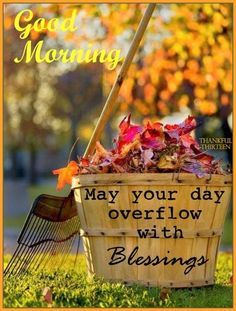Good Morning May your day overflow with blessings