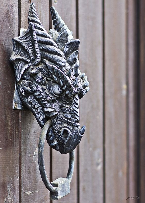 Very cool Dragon door knocker.
