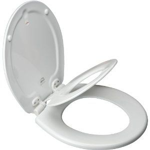 "Need to get one of these soon. A ""bonus"" is that the toilet seat in our extra bathroom is crap anyways and needs replacing."
