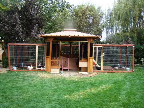 Coops gazebo and chicken coops on pinterest for Gazebo chicken coop