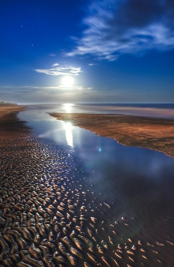 ✯ Full Moon at Folly Beach - Charleston SC Charleston, SC- Graduated from College here and lived here 10 years.  I miss the atmosphere, the ocean and the food.
