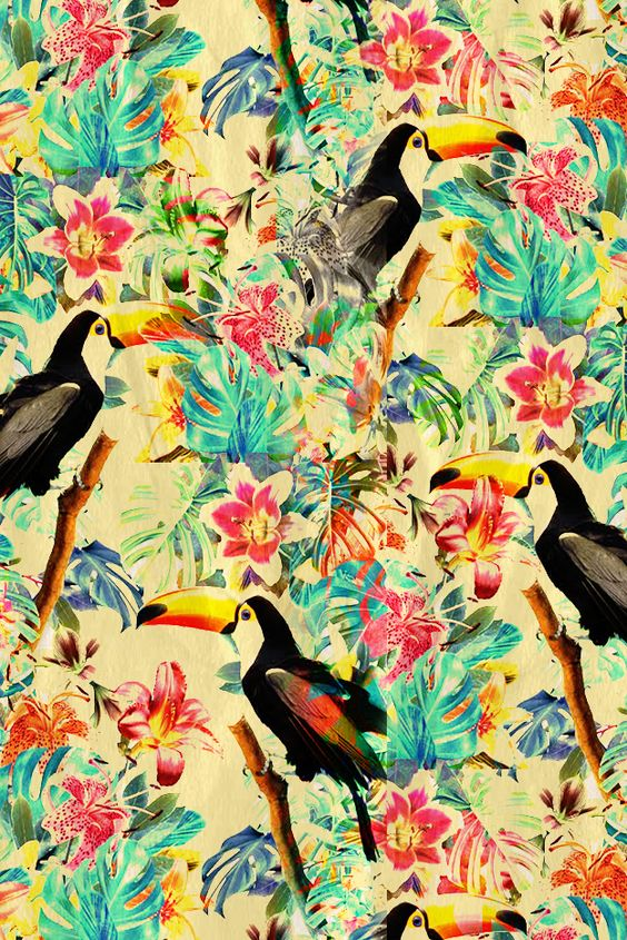 collage tropical - 10/01/14:
