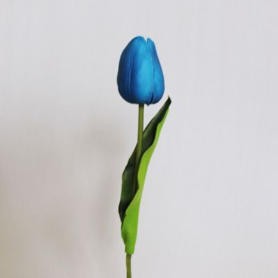 Beautiful and Blue on Pinterest Single Blue Tulip