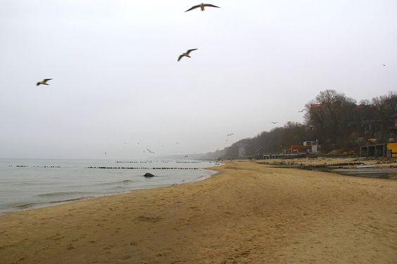 Справа река Чистая, русло которой изменилось после шторма. Фото: Evgenia Shveda