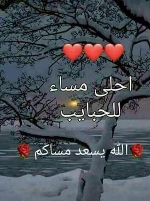 مسآء الورد الأبيض مثل قلوبكم مساء العود والبخور وهذا طيبكم مسآء الشهد يا أحلى Good Evening Greetings Good Morning Arabic Evening Greetings