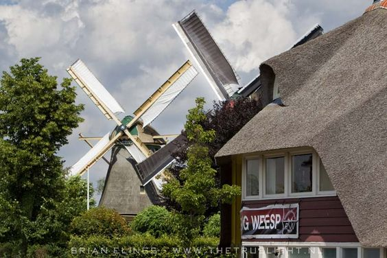 These are two of the windmills on the river Vecht.  I can see them out of my bedroom window!!