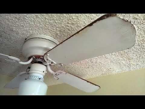 Abused ceiling fans - YouTube | fans! | Ceiling fan, Fan